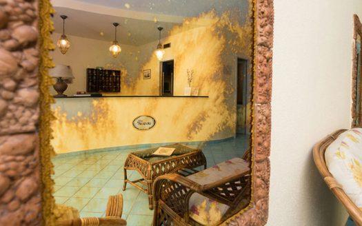 Hotel Il Nespolo - Hall